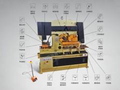 【安徽亚联】 Q35KL-60 联合冲剪机 厂家直供