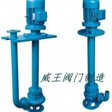 专业生产液下泵 液下式排污泵 自动搅匀排污泵
