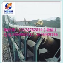 龙海安装调试网带输送机 双向输送滚筒输送机LU