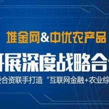 堆金网P2P理财平台 品质有保障,深圳大众在线只提供最合适的