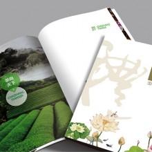 VI设计公司一流品牌选择思乘平面设计,质量可靠,用户至上