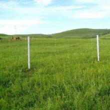 供青海格尔木草原网和玉树护栏网公司