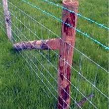 供西宁养殖围栏网和青海草原网供应商