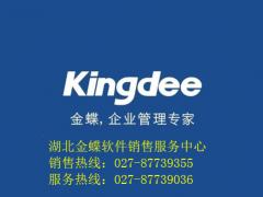 公司业务管理金蝶软件效率高 武汉金蝶软件哪家好