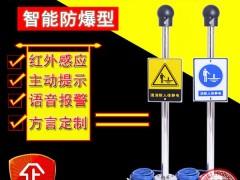 域阔QJ-B-2-A防爆人体静电接地释放报警器