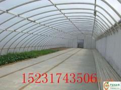 蔬菜插地棚 不生锈的压膜槽   抗老化的压膜带
