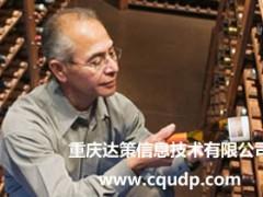 重庆零售软件开发 零售行业SAP ERP软件实施选择达策