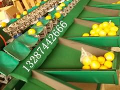 柠檬分级设备厂家专业生产好机器