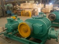 机械密封罗茨风机生产厂家