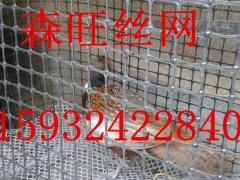 黑色塑料养殖围栏网  圈地塑料围栏网