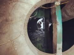 天津滨海高新区专业市政网管清淤检测