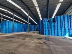 厂家直销多种型号塑料托盘,仓库塑料垫板1210-1111