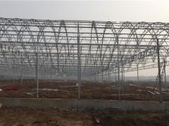 连栋温室大棚6米宽4米开间11间的总造价