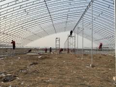 农业大棚10米宽80米长的120型C型双梁骨架一平米多少钱